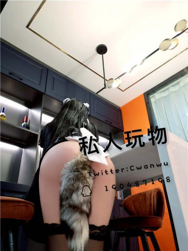 ▌私人玩物▌回归首发大作–尾巴肛塞黑丝女仆[45P/2V/1.16G]-福利好好看