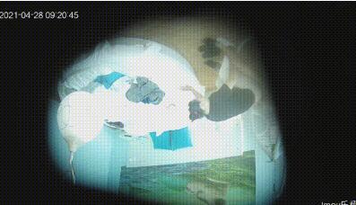 21年最新酒店偷拍系列★4.27.28.30★上帝视角☆激情啪啪啪