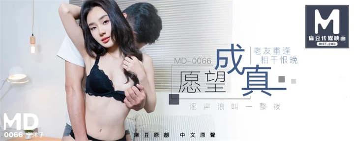 MD0066 - 老友重逢 相干恨晚[1V/643MB]